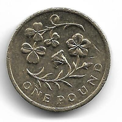 One Pound Coin - Issued 2014 - Northern Ireland- Floral Emblem Flax And Shamrock