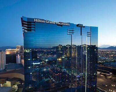 Hilton Grand Vacation At Elara 5,000 Annual Gold Points Timeshare For Sale