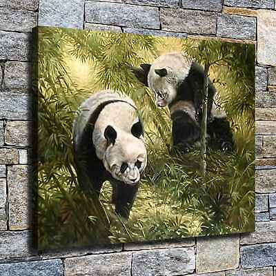 "12""x16""panda High Definition Canvas Print Home Decoration Studio Wall Poster"