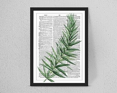 Vintage/Retro DICTIONARY Botanical Leaf Flower print/wall art A4/A3 Wall Decor