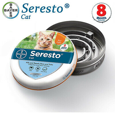 Bayer Serest0 Flea and Tick Collar For Cats 8 Months Full Protection Treatment