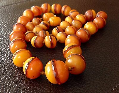 RARE Authentic OLD Victorian to ArtDeco EGG YOLK BUTTER SCOTCH amber necklace