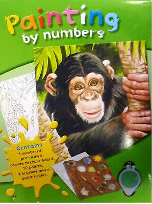 Paint by Numbers Art Kit- Chimpanzee  1768