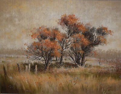 Australian School ~ Appealing Large Oil Painting ~ Cattai, Nsw