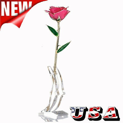 24K Golden Rose Long Stem Real Rose Dipped in Gold with Gift Box For Valentine's