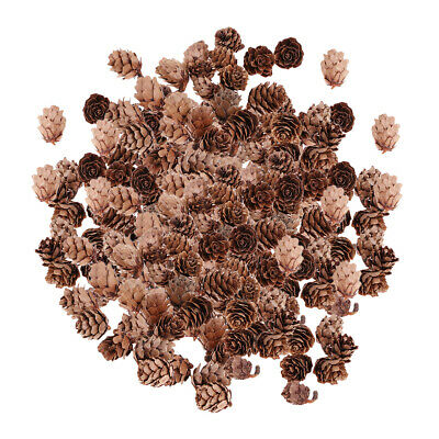 300x Natural Real Pine Cone Dried Pineal Nut For DIY Your Own Xmas Garland