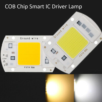 220V Floodlight 20/30/50W Cool/Chaude Blanc COB Chip Smart IC LED Driver La mode