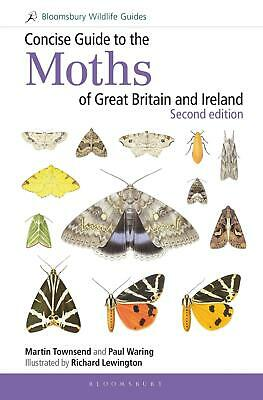 Concise Guide to the Moths of Great Britain and Ireland by Martin Townsend