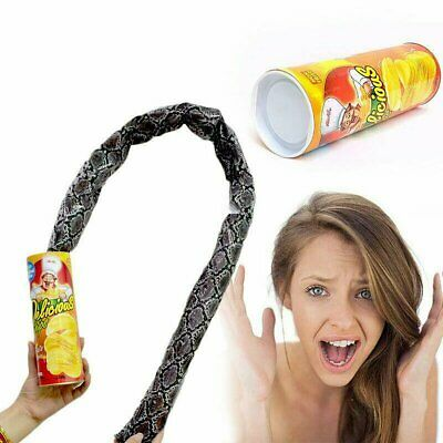 Trick Playing Simulation Snake In A Can Gag Prank The Potato Chip Snake Can Jump