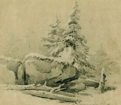 Old Pencil Drawing - Old Drawing - Christmas Trees and Rocks, Fir