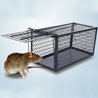 UK Sale Humane Rat Trap Cage Animal/Pest/Rodent/Mice/Mouse Catch Fast Shipping!