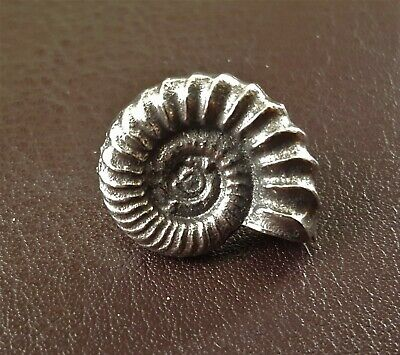 Ammonite Fossil Pin Brooch in Fine Pewter