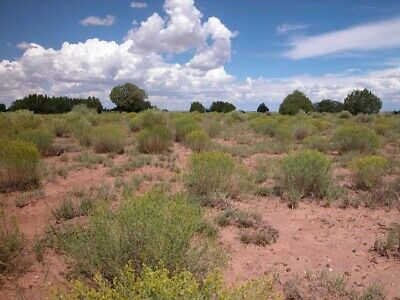 1.18 +/- Acre Property 3 Hours Away From Phoenix! Great Investment Opportunity!