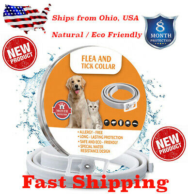 Natural Flea and Tick Collar for Large Dogs 8 Months Control Full Protection USA