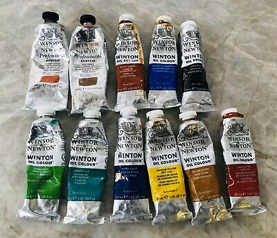 11 ELEVEN Winsor Newton Professional 2 Acrylic And 9 Oil Paints