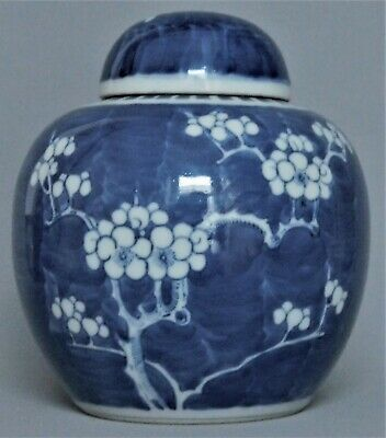 Qing Dynasty Chinese Blue & White Prunus Jar with Cover - Excellent Condition