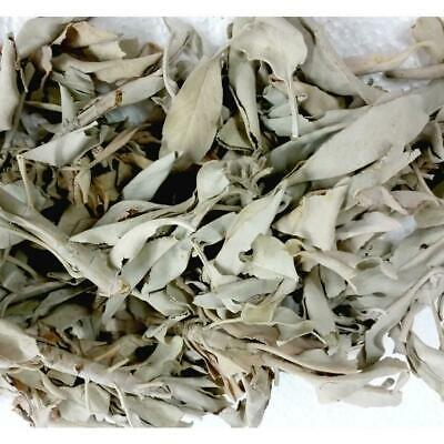 Loose White Sage - 50 grams - High Quality - Fresh Batch - Smudging Sage