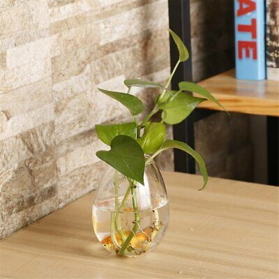 Cylinder Glass Wall Hanging Vase Bottle for Plant Flower Decorations R9T4