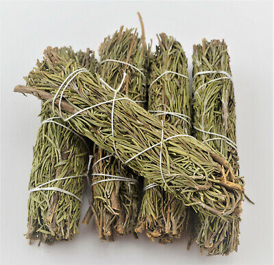 5  Pcs Rosemary Sage Bundles Smudge Kit Repalcements Spiritual Cleansing 4""