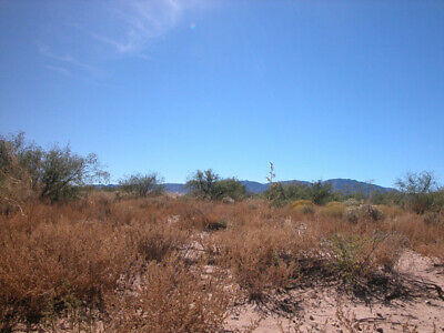 10.00+/- Acre Investment Property 1.5 Hours From Tucson,AZ! GREAT ACCESS!