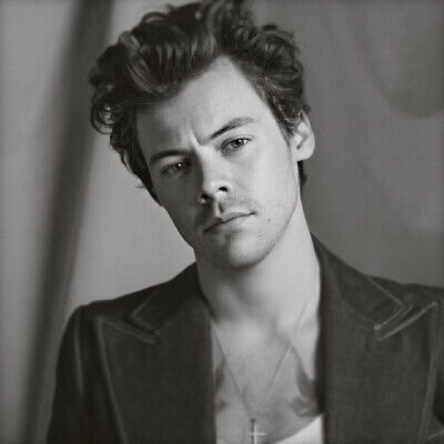 """DUNKIRK One-Direction Super Star Great Singer 17/""""x13/"""" Poster 023 Harry Styles"""