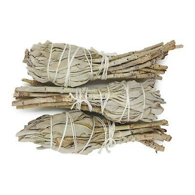 2X Mini White Sage Smudge Stick Spiritual Cleansing Ritual Ceremony Smudge Tool