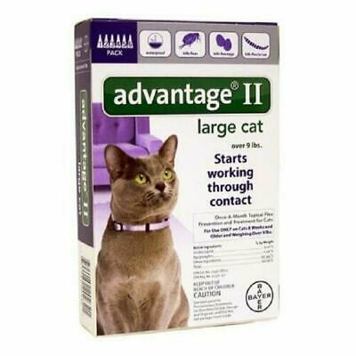 Advantage II Large Cat over 9 lbs 6-Pack Flea Topical Treatment Bayer