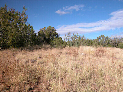 1.14 +/- Acre with Beautiful Desert views 3 Hours From Phoenix, AZ!