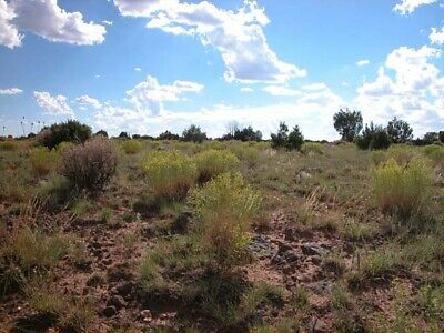 1.15 +/- Acre Investment Property with GREAT ACCESS 3.5 Hours from Phoenix, AZ!