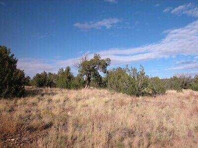1.14 +/- Acres in Navajo County, AZ, 1.5 Hours from Flagstaff, AZ!