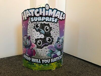 BNIB Hatchimals Surprise Twins Pea cats big kitty Spinmaster Limited Edition