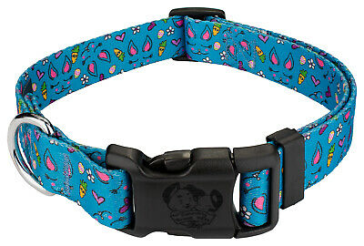Country Brook Petz® Deluxe Blue Bunny Dog Collar Limited Edition