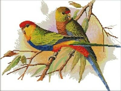Two Parrots (2) Birds 14CT Counted Cross Stitch Kit. Craft Brand New.