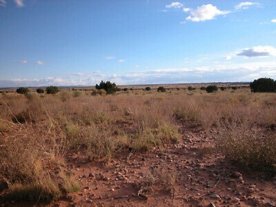 2.50 +/- Acre Investment Property 2.5 Hours from Grand Canyon, AZ!