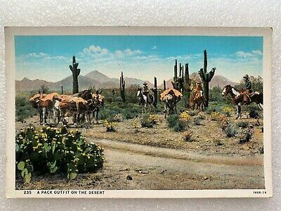 Vtg Herz Color Postcard Cowboys Horses Pack Outfit on the Desert Cactus  - B6
