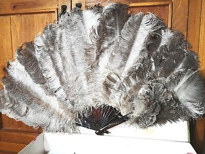 Superb Antique Duvelleroy (?) Ostrich Feathers & Faux/ Real Tortoiseshell Fan