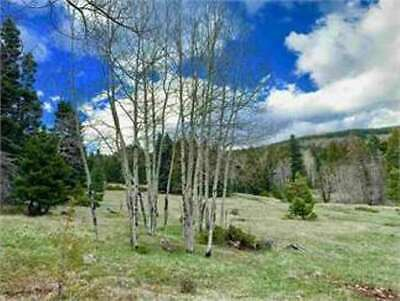 VACANT LOT at ANGEL FIRE RESORT in ANGEL FIRE, NM - Bankruptcy Estate Sale!