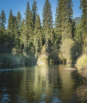 Land for sale Montana Real Estate Acreage lots Property in Montana Fishing