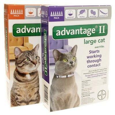 Bayer Advantage II Flea and Tick Treatment for Small Cat 5-9 lbs - 6 PACK - NEW