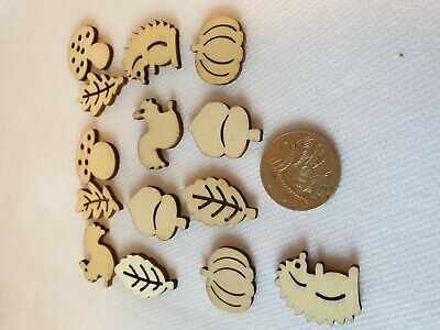 14 Craft  Wood Shapes