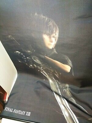 Final Fantasy Xiii Cloth Cloud mural 30 inches by 42 inches