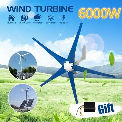 6000W 5 Blades Horizontal Wind Generator 12V/24V With Controller