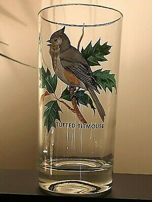 Set of {8} VINTAGE {1970'S} 12 oz Drinking Glasses/8 Different Song Bird's
