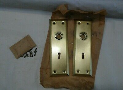 "Pair set 2 large NOS satin brass skeleton key mortise door back plate 2 1/4""x 7"""