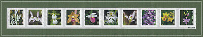 *NEW* 2020 Wild Orchids (Coil Strip of 10) 2020 Mint NH - *(After Feb 21)*