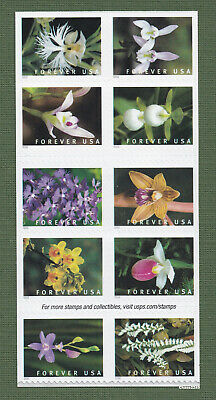 *NEW* 2020 Wild Orchids Booklet (Block of 10) 2020 Mint NH - *(After Feb 21)*