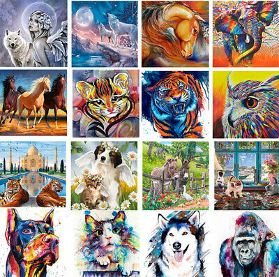 DIY Paint By Number Kit Digital Oil Painting Art Wall Home Decor Funny Animal