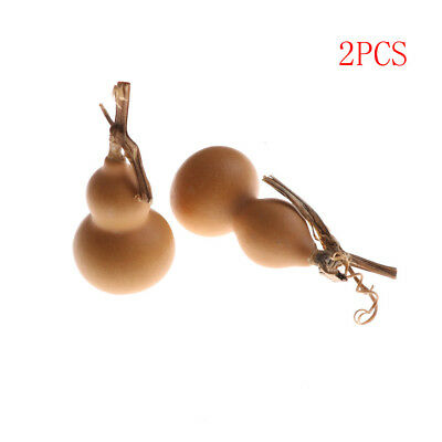 2pcs 40mm-60mm Natural Random Dry Gourd Crafts Arts Collection ou