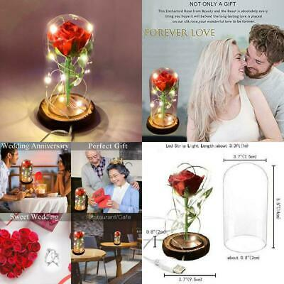Beauty And The Beast Light-up Enchanted Red Rose Glass Dome Valentine's Day Gift