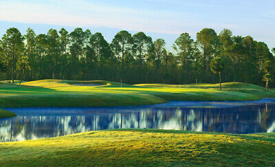 1/4 RESIDENTIAL LOT by Beach and Golf Club, PENSACOLA, Florida / Pre-Foreclosure